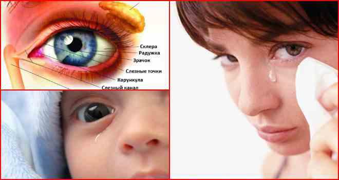 Что нужно делать когда слезятся глаза при простуде 72